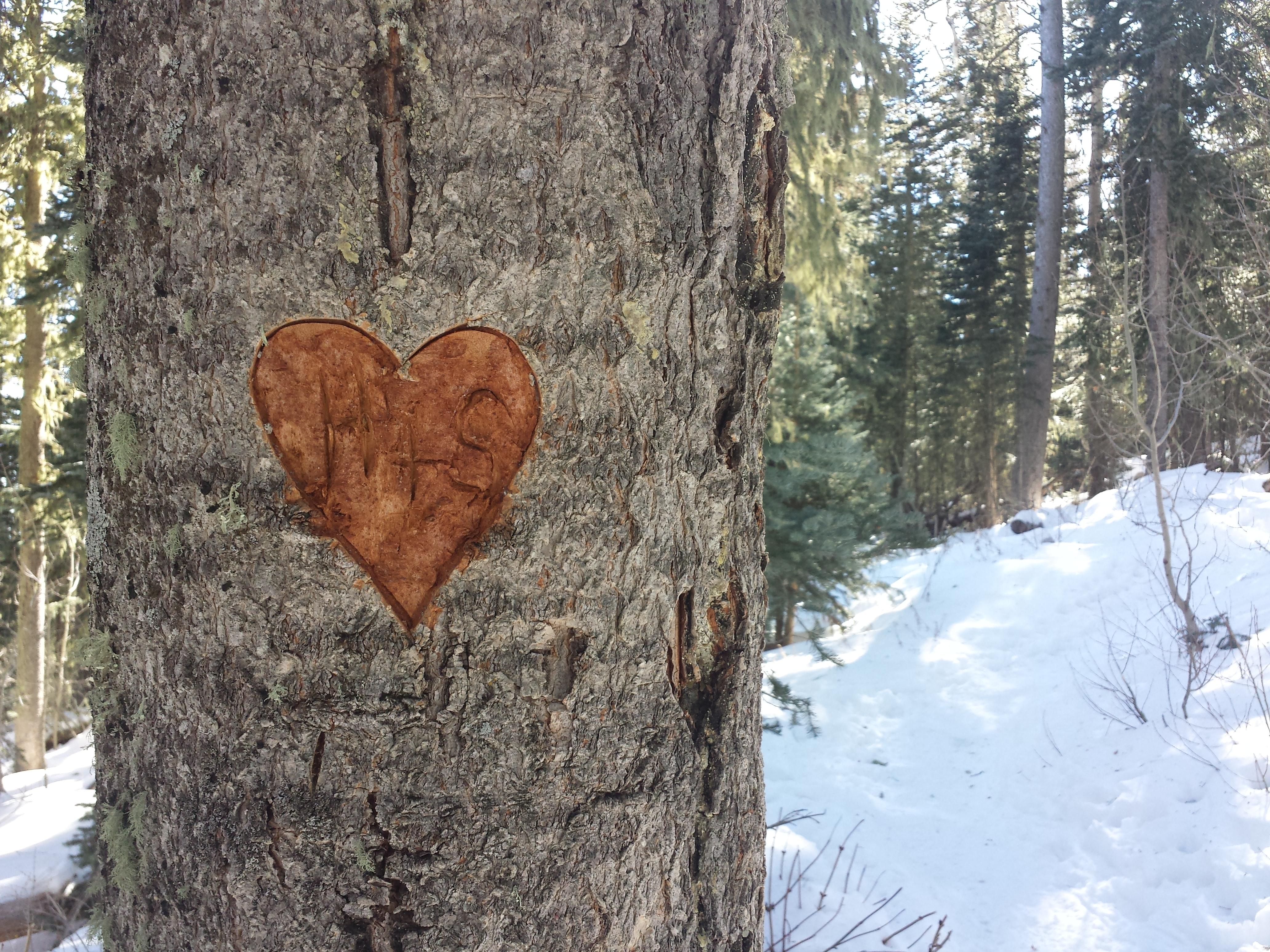 Crest Heart