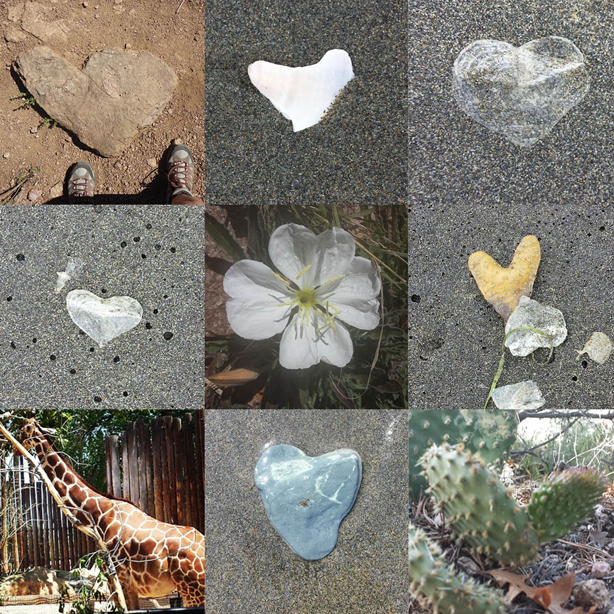 Heart Collage5